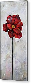 Winter Poppy II Acrylic Print by Shadia Derbyshire
