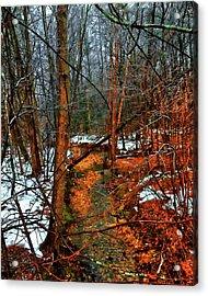 Winter Recedes Acrylic Print by Michael Putnam