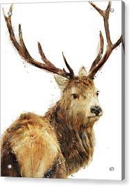 Winter Red Deer Acrylic Print