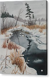 Winter Reflection Acrylic Print by Debbie Homewood