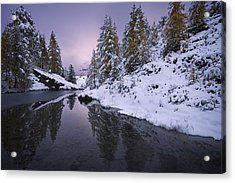 Winter Reverie Acrylic Print