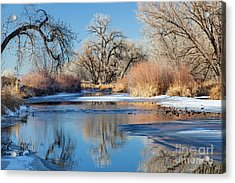 Winter River In Colorado Acrylic Print