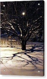 Winter Romace Acrylic Print by Samantha Thome