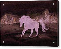Winter Run Acrylic Print by Darlene Watters