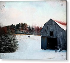 Winter Run Acrylic Print
