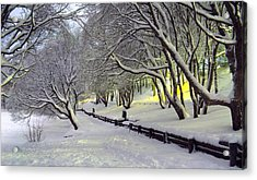 Acrylic Print featuring the photograph Winter Scene 1 by Sami Tiainen