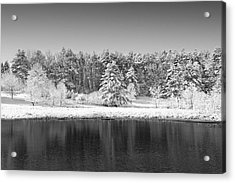 Winter Scene 2 Acrylic Print by Edward Myers