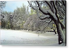 Acrylic Print featuring the photograph Winter Scene 3 by Sami Tiainen