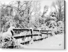 Winter Scene Acrylic Print by Kathy Jennings