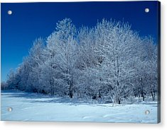 Winter Scene Acrylic Print by Raju Alagawadi