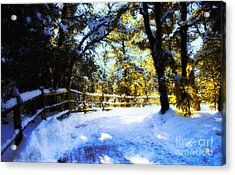 Winter Scene Acrylic Print by Terry Runion