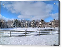 Acrylic Print featuring the photograph Winter Scenery 14589 by Guy Whiteley