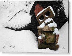 Acrylic Print featuring the photograph Winter Sculpture by Dylan Punke