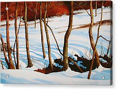 Winter Shadows Acrylic Print by Faye Ziegler