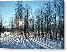Winter Shadows - Grand Teton National Park Acrylic Print