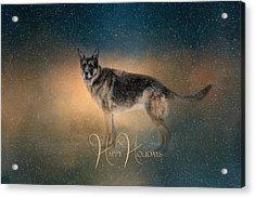 Winter Shepherd - Happy Holidays Acrylic Print