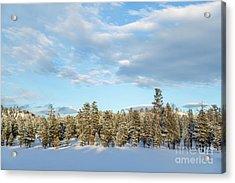 Winter Silence Acrylic Print by Julia Hiebaum
