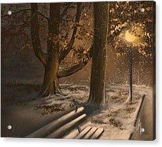 Winter Silence Acrylic Print by Veronica Minozzi