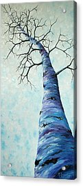 Winter Sky Acrylic Print