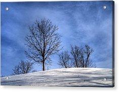 Winter Skyline Acrylic Print
