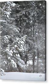 Acrylic Print featuring the photograph Winter Snow by John Black