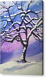 Winter Snowstorm Acrylic Print by Christine Camp