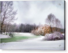 Winter Solace Acrylic Print