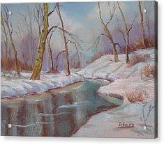 Winter Solstice Acrylic Print by Patricia Seitz