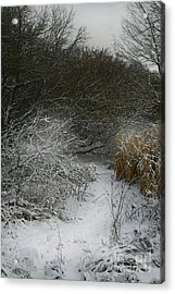 Acrylic Print featuring the photograph Winter Stew by Jan Piller
