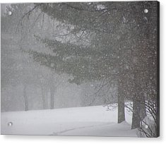 Winter Storm In Bush Acrylic Print by Richard Mitchell