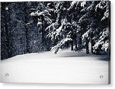 Winter Storm Acrylic Print by Maggie Terlecki
