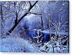Winter Stream Acrylic Print by Phil Koch