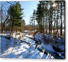 Winter Stream  Acrylic Print by Tim Fitzwater