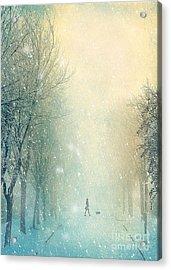 Winter Stroll Acrylic Print by Svetlana Sewell