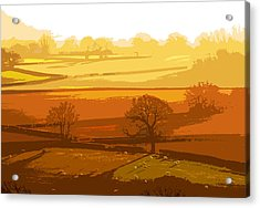 Lyth Hill 1 - Winter Sun  Acrylic Print