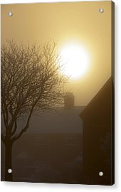 Winter Sun Acrylic Print by Svetlana Sewell