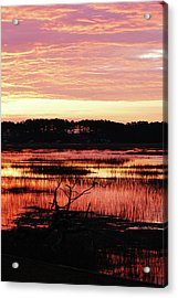 Winter Sunrise Acrylic Print by Margaret Palmer