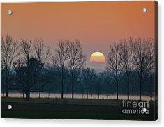 Winter Sunset 1 Acrylic Print