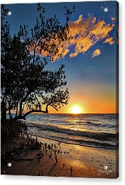 Acrylic Print featuring the photograph Winter Sunset by David A Lane