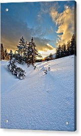 Winter Sunset Acrylic Print by David Andersen