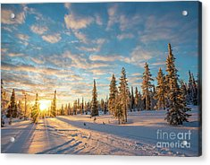 Winter Sunset Acrylic Print by Delphimages Photo Creations