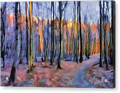Acrylic Print featuring the painting Winter Sunset In The Beech Wood by Menega Sabidussi
