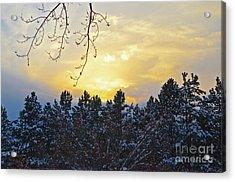 Winter Sunset On The Tree Farm #1 Acrylic Print