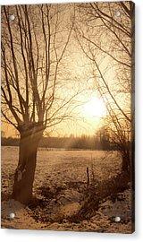 Winter Sunset Acrylic Print by Wim Lanclus