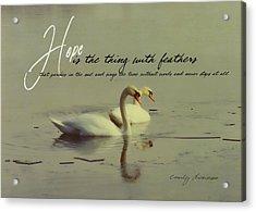 Winter Swans Quote Acrylic Print