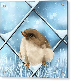 Acrylic Print featuring the painting Winter Sweetness  by Veronica Minozzi