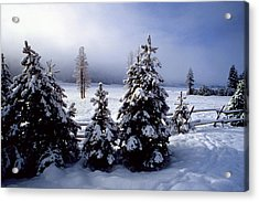 Winter Takes All Acrylic Print