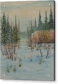 Winter Trail Alberta Acrylic Print
