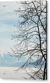 Winter Tree And Alps Mountains Upon The Fog Acrylic Print