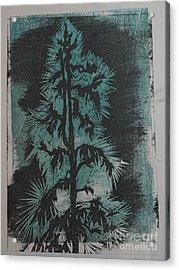 Winter Tree Acrylic Print by Crafty Daniel